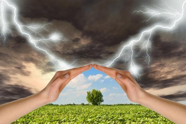 Влияние погоды на организм и здоровье человека abae845706e