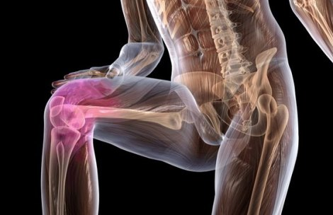Суставы лечение травами лечение суставов с помощью приборов